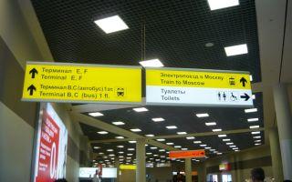 3 способа, как узнать терминал вылета в Шереметьево по номеру рейса